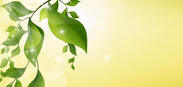 Wellness gutschein vorlage kostenlos  Wellness Gutschein Vorlagen zum Ausdrucken